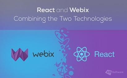 react webix development