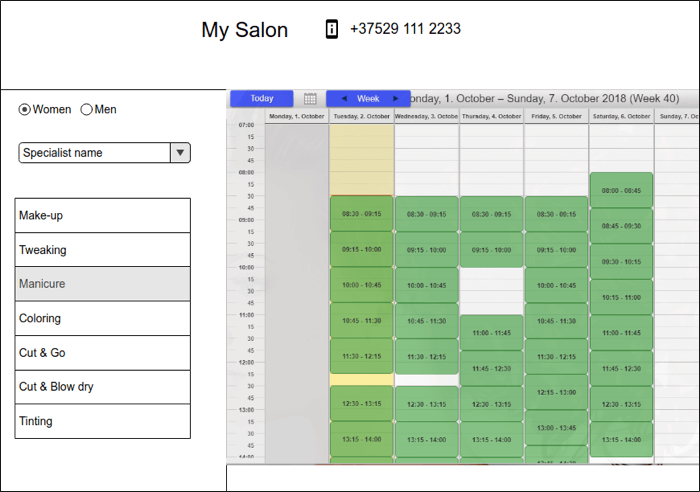 first mockup - Booking System for the Chain of Salons